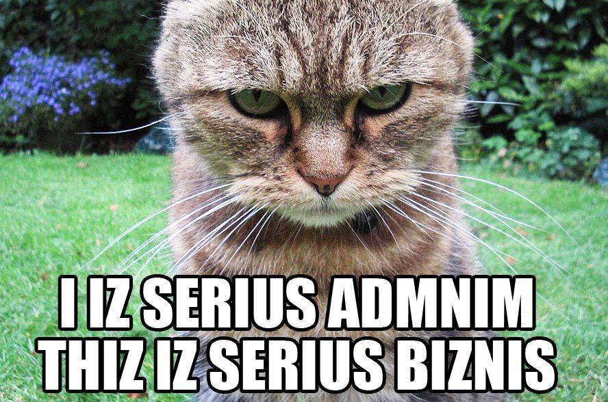 administrator lolcat